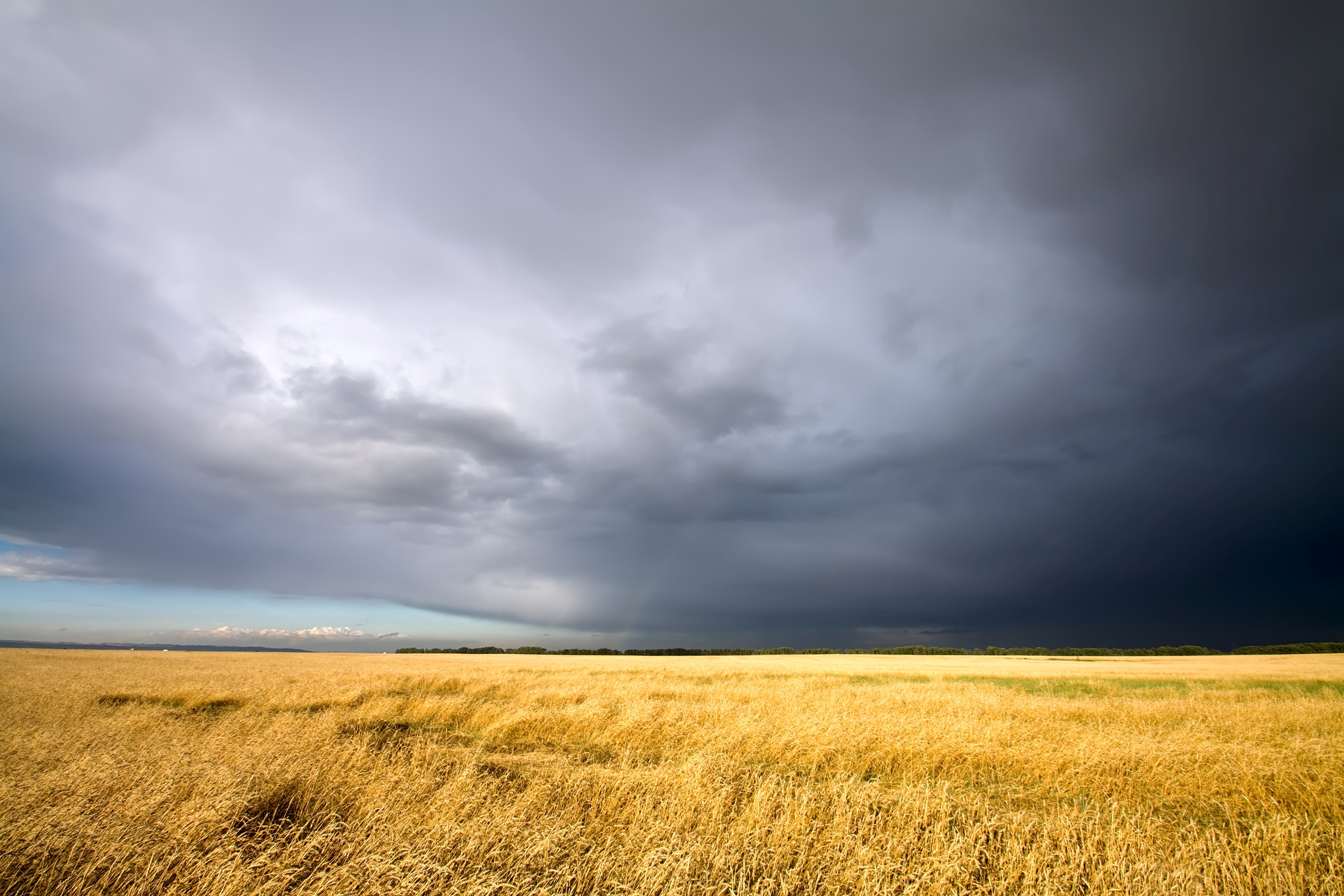 Mother Nature Responsible For Harvest Delays In Much Of The Midwest