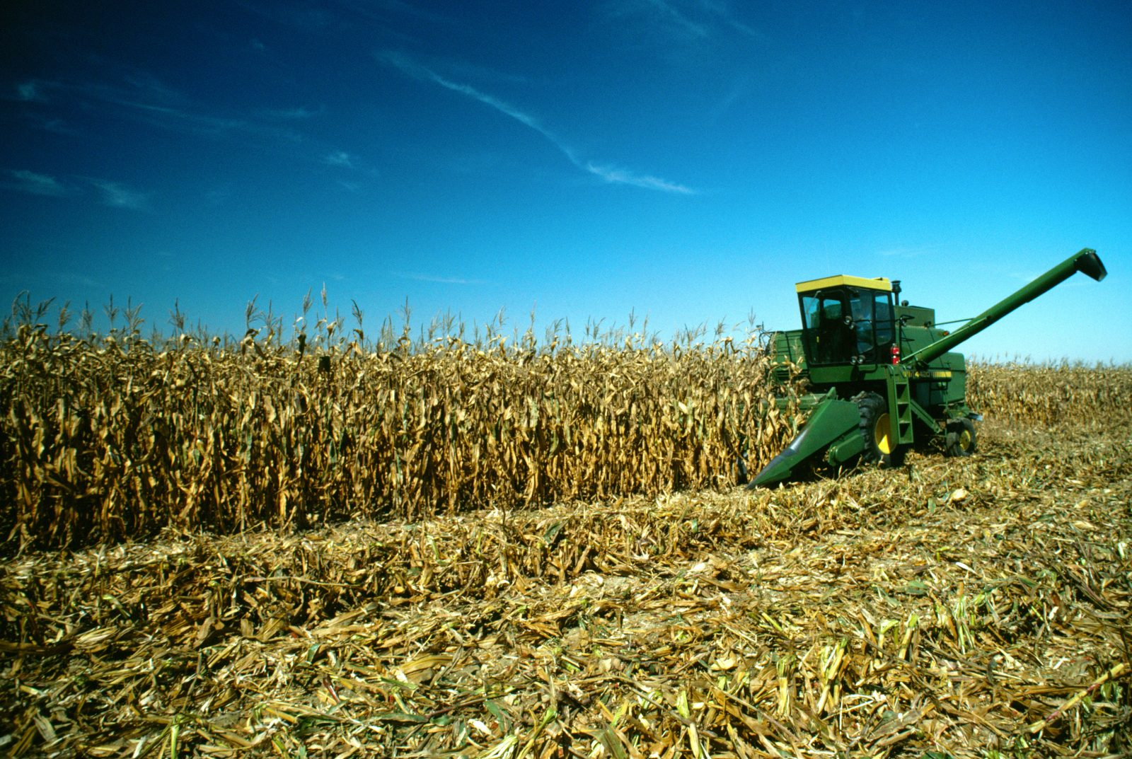 Quarterly Grain Stocks: Corn Down 2%, Soybeans Up 47%